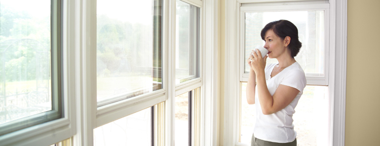 window_cleaning1